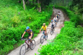 Explore Ba Vi Jungle All Day On A Bicycle