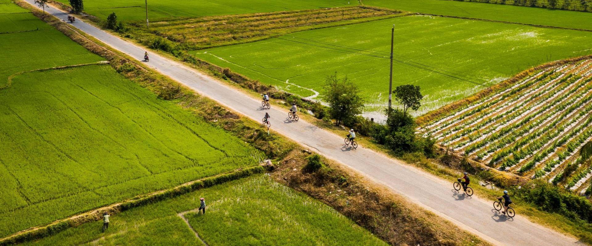 Cycling In Countryside