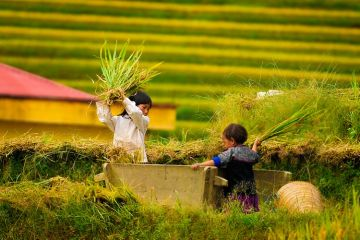 From The Mountain To Halong Bay 7 Days