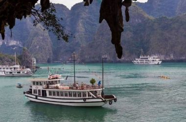 Wego Halong Cruise Full Day