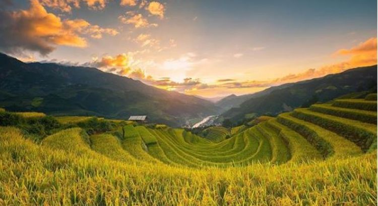 Mu Cang Chai - the land of most breathtaking terraced rice fields
