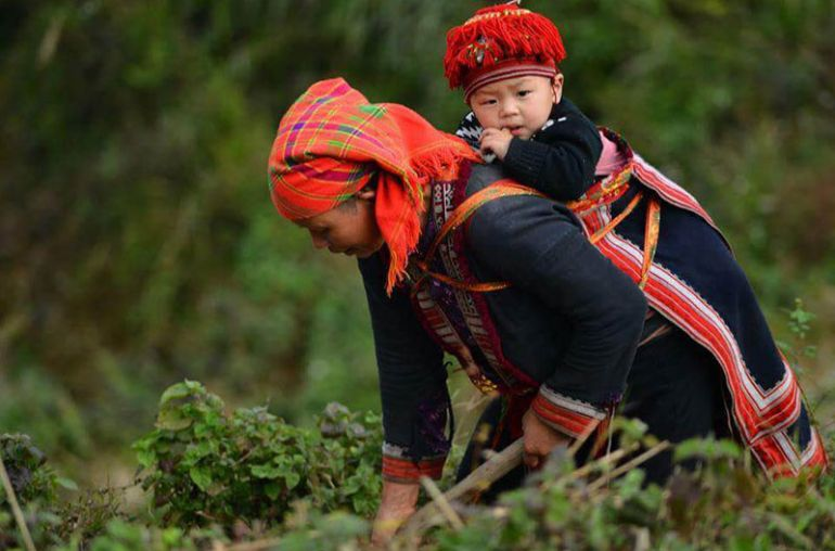 Sapa-Trekk-Route-B2Days-3Nights-by-Bus-HaNoi-Sapa