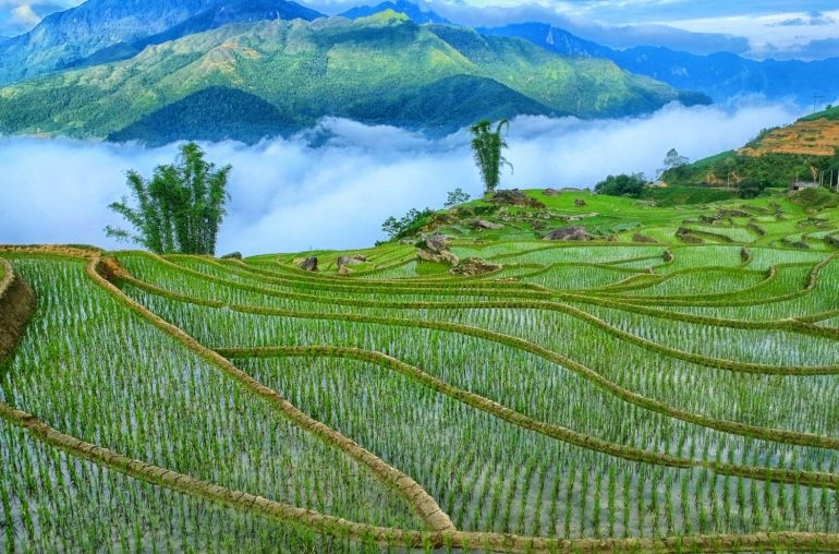 Northern Vietnam Trails 14 Days
