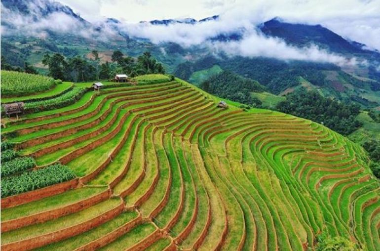 Terrace-Rice-Field-in-Mu-Cang-Chai-2